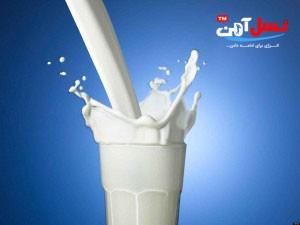 milk-09-300x225