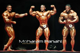 moharam_panahi_wallpaper_-_aksdownload.com