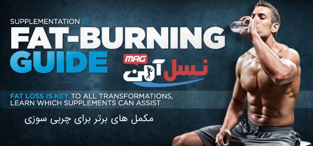 fat-burning-guide