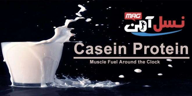 casein_protein_1