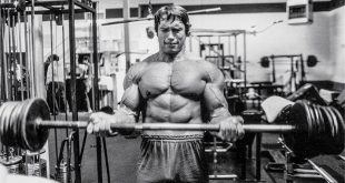 arnold-blueprint-mass-training-3-graphics