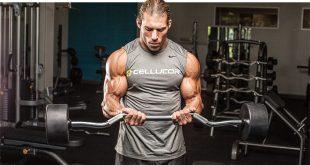نه نکته مهم و نه حرکت عالی برای عضلات جلو بازو